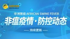非洲猪瘟疫情防控动态