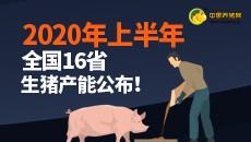 2020年上半年全国16省生猪产能公布